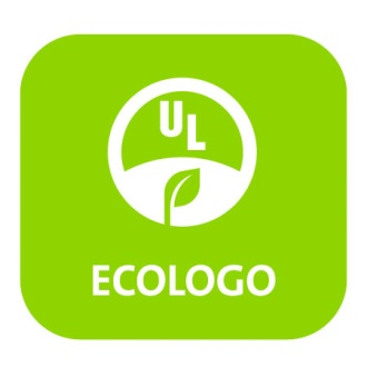 eco logo beyond the forest
